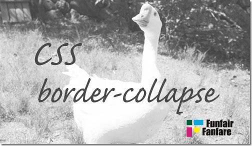 ホームページ制作 css border-collapse
