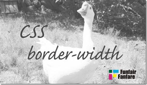 ホームページ制作 css border-width