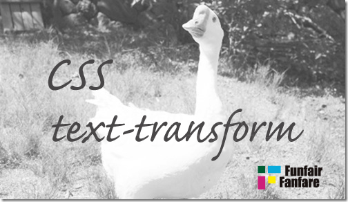 ホームページ制作 css text-transform テキストトランスフォーム