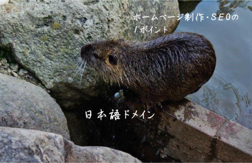 日本語ドメイン ホームページ制作 Web制作 SEO