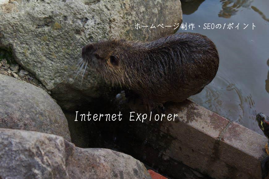 Internet Explorer ホームページ制作・SEO