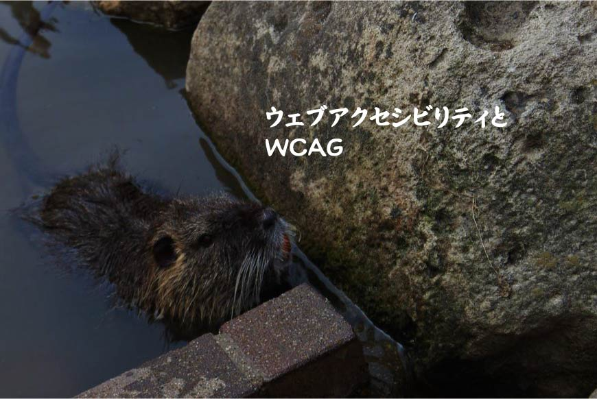 ウェブアクセシビリティとWCAG