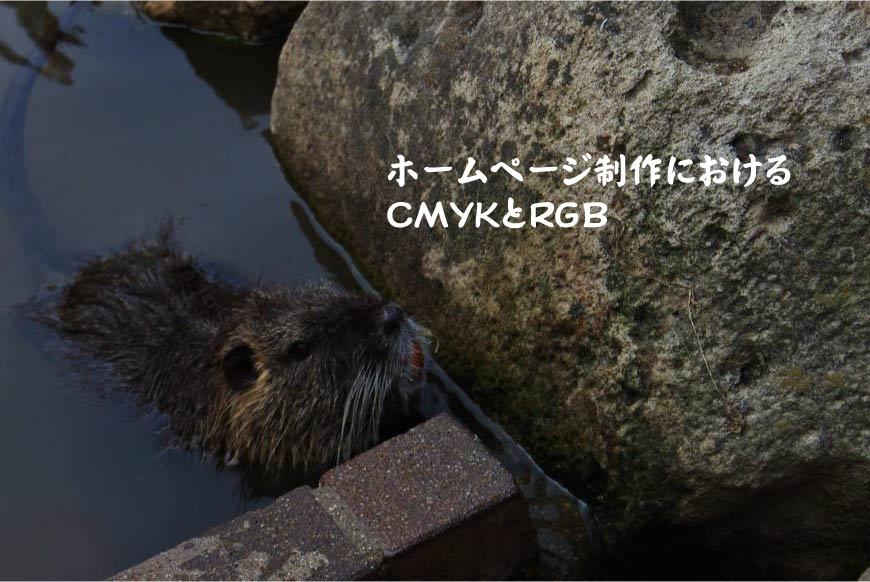 ホームページ制作におけるCMYKとRGB