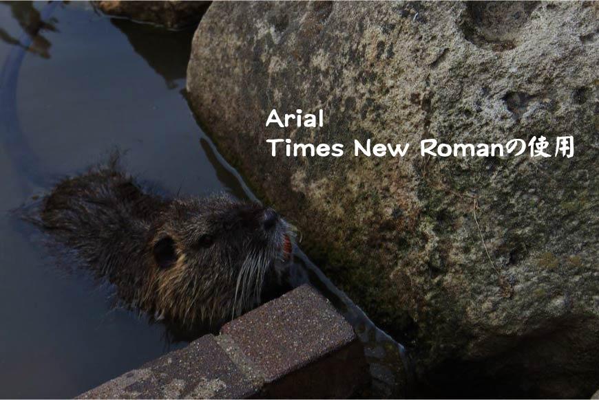 Arial Times New Romanの使用 ホームページ制作・Web制作