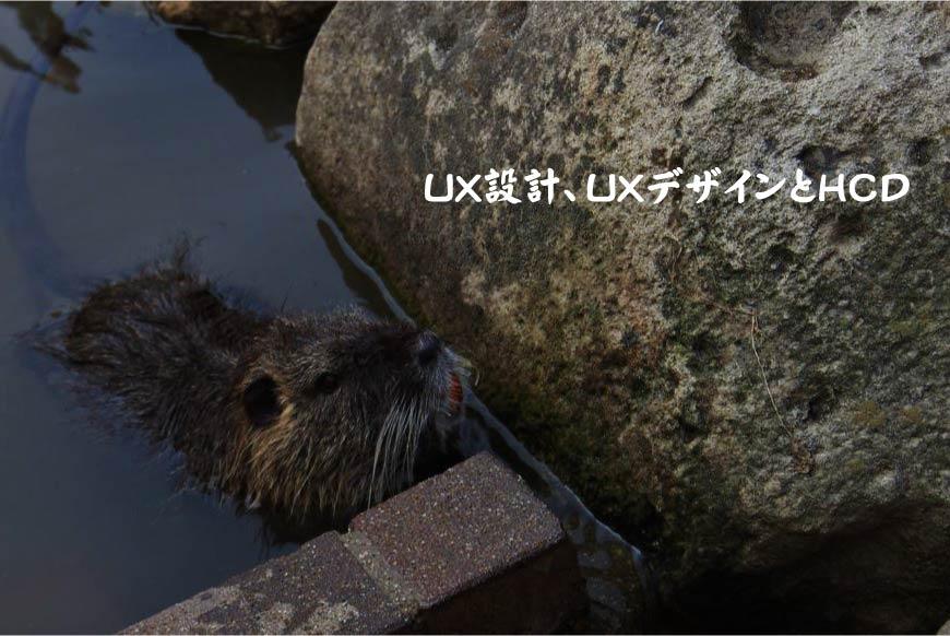 UX設計 UXデザイン HCD