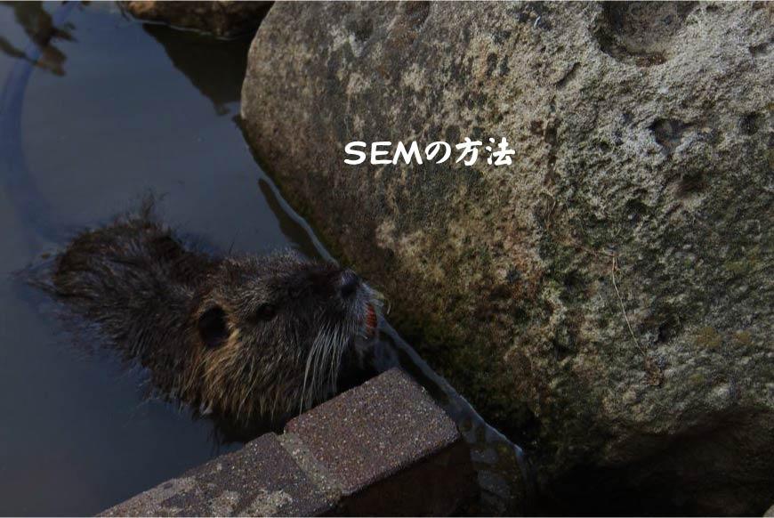 SEMの方法 ホームページ制作・Web制作