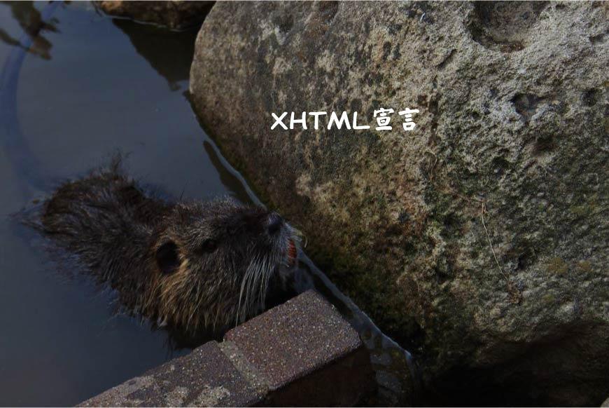 ホームページでのXHTML宣言 ホームページ制作・Web制作
