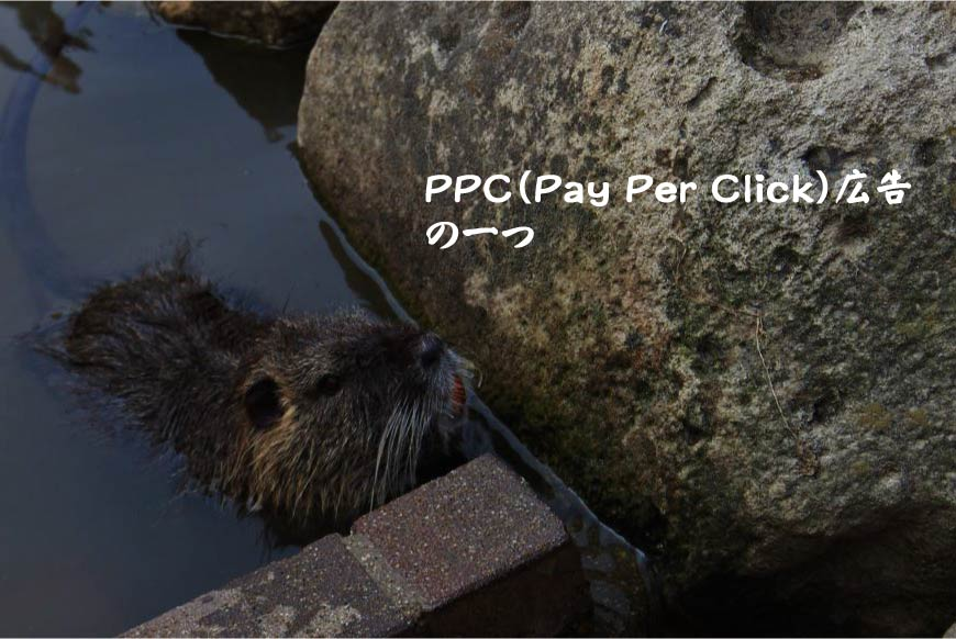 PPC(Pay Per Click)広告の一つ Webマーケティング