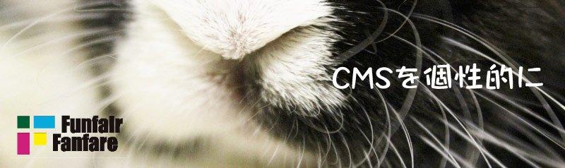 CMSカスタマイズでホームページ(ウェブサイト)を個性的に