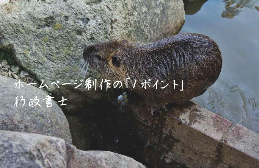 行政書士ホームページ制作 Web制作 SEO