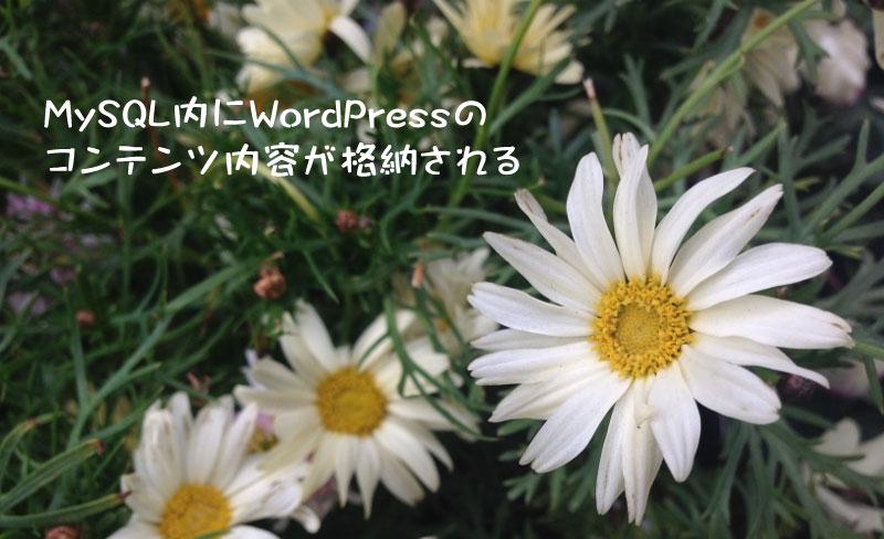 MySQL内にWordPressのコンテンツ内容が格納される