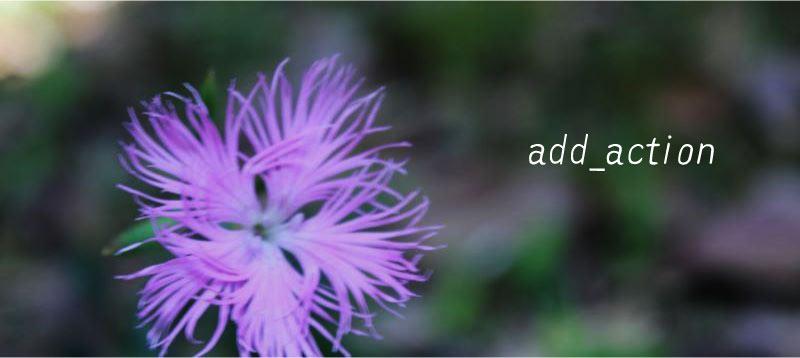 add action アクションフック WordPress