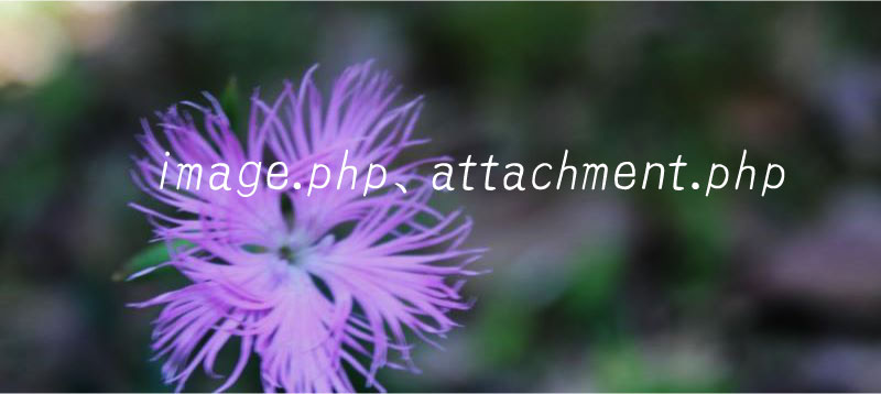 image php attachment php WordPress