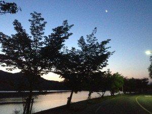 早朝の広沢池