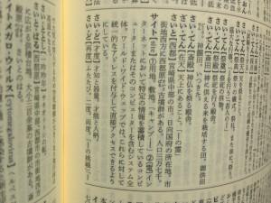 広辞苑「サイト」