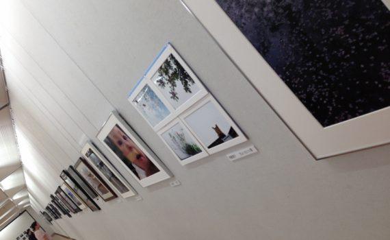 視点 京都展2016 公募写真展展示