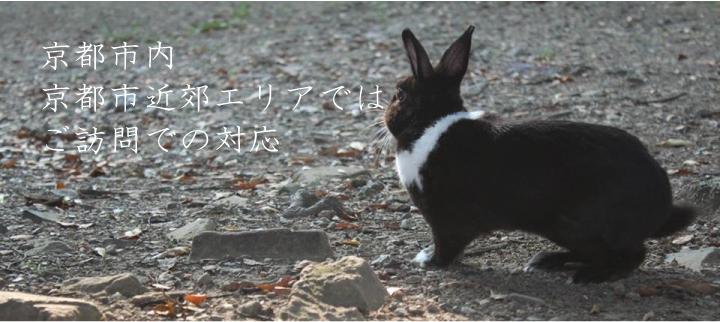 ホームページ制作 京都市・京都市近郊ではご訪問での対応