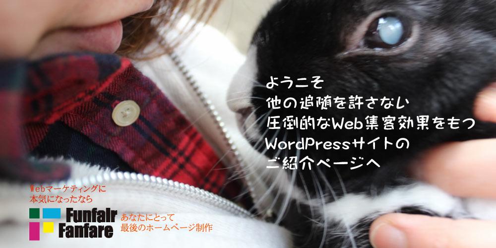 WordPress ホームページ制作 CMS EXPERT