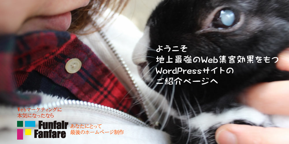 WordPress ホームページ制作 Lapid Rabbit DUTCH