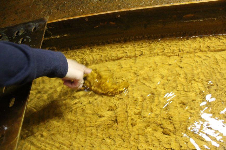 坑廃水の銅や鉄が沈殿して塊に