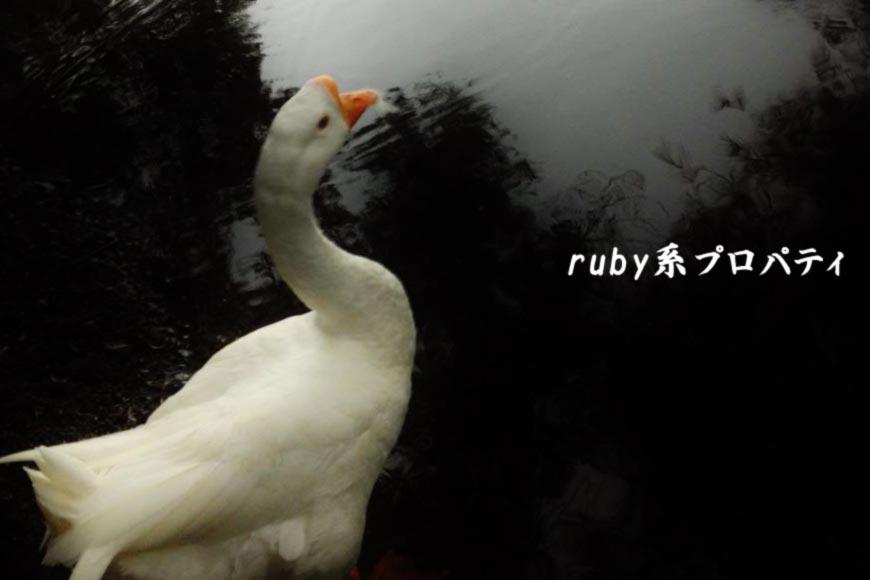 ホームページ制作 ruby系プロパティ