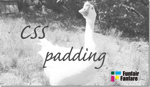ホームページ制作 css padding パディング