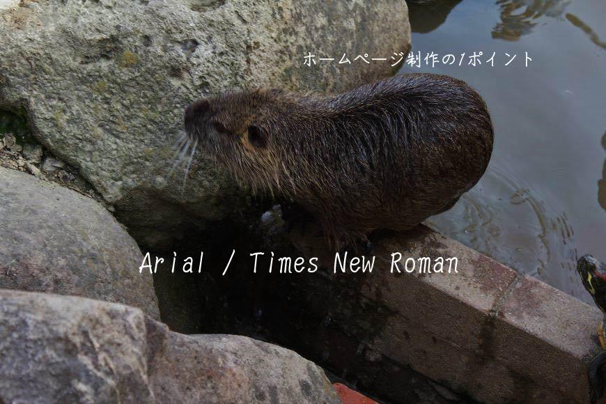 Arial Times New Roman ホームページ制作・Web制作