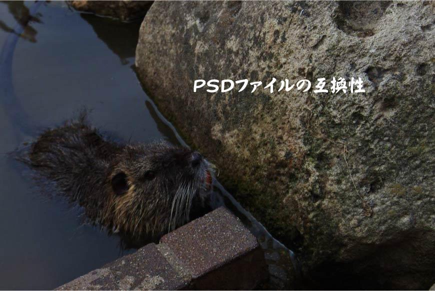 PSDファイルの互換性 ホームページ制作・Web制作