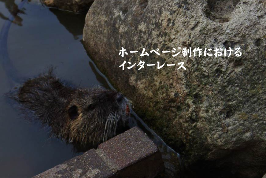 ホームページ制作におけるインターレース