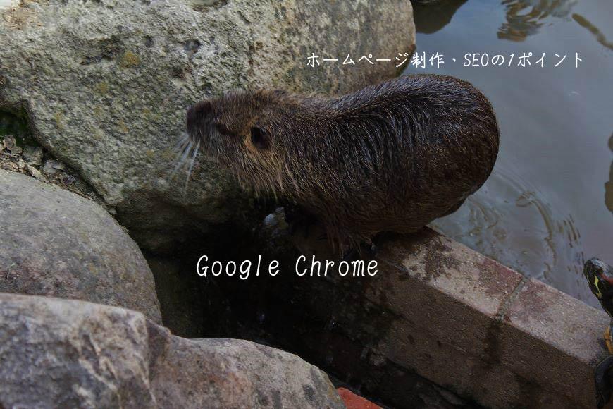 Google Chrome ホームページ制作・SEO