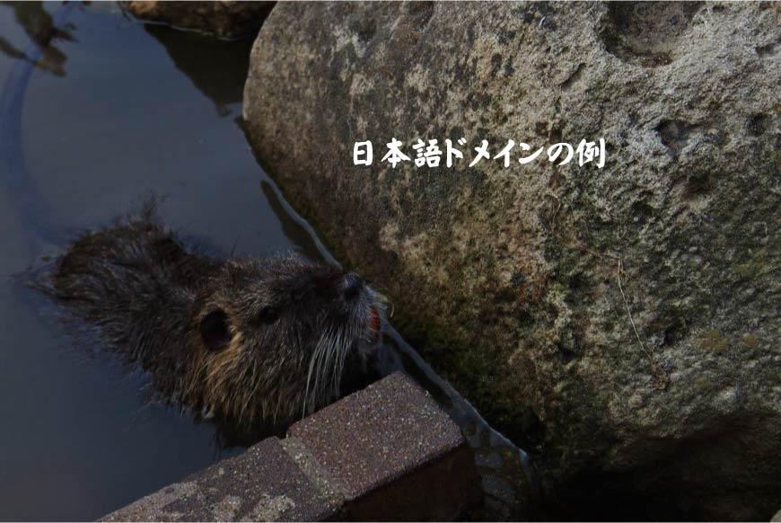 日本語ドメインの例 ホームページ制作・Web制作