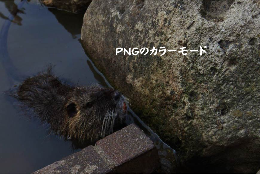 PNGのカラーモード ホームページ制作・Web制作
