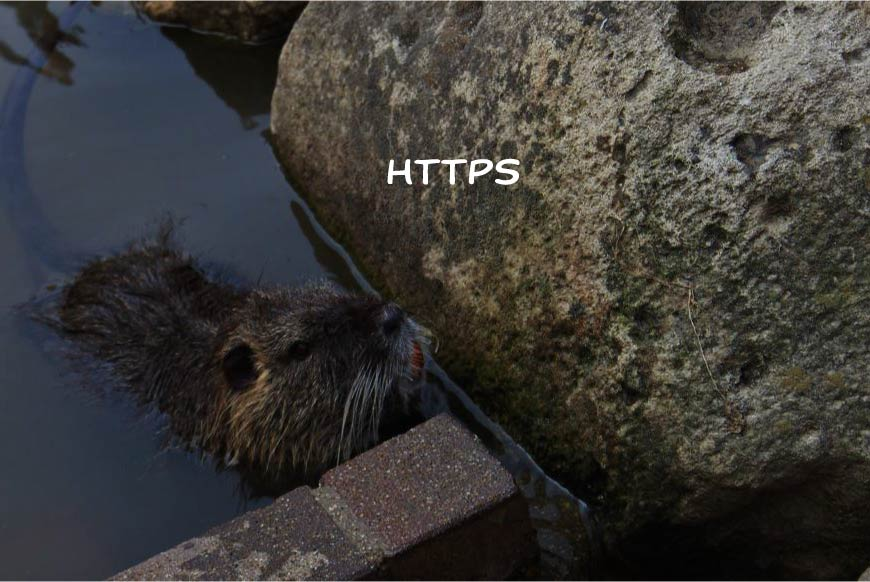 HTTPS ホームページ制作・Web制作