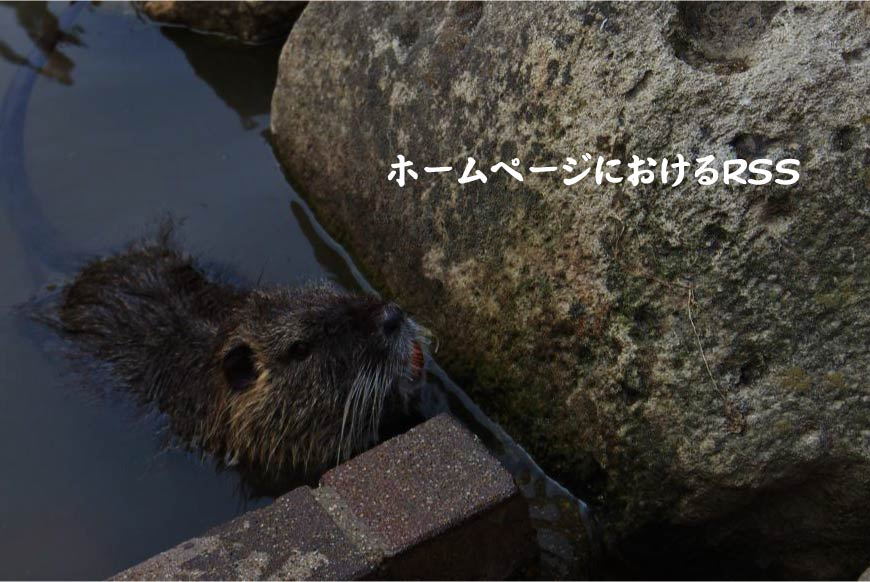 ホームページ(ウェブサイト)におけるRSS