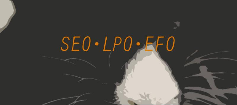 SEO・LPO・EFO ホームページ制作
