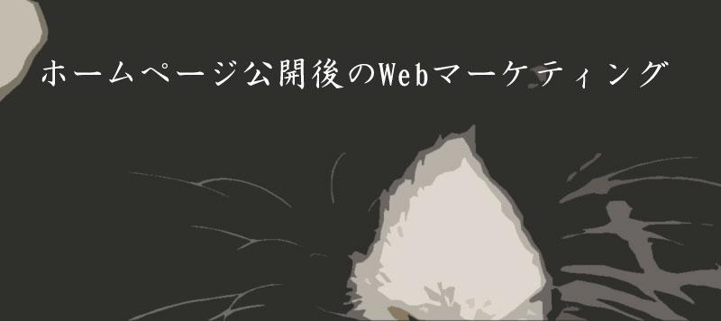 ホームページ公開後のWebマーケティング2