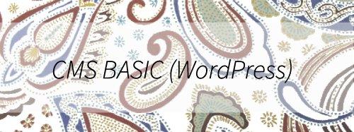 CMS BASIC(WordPress)は、既存ホームページ(ウェブサイト)をWordPress化するサービスです
