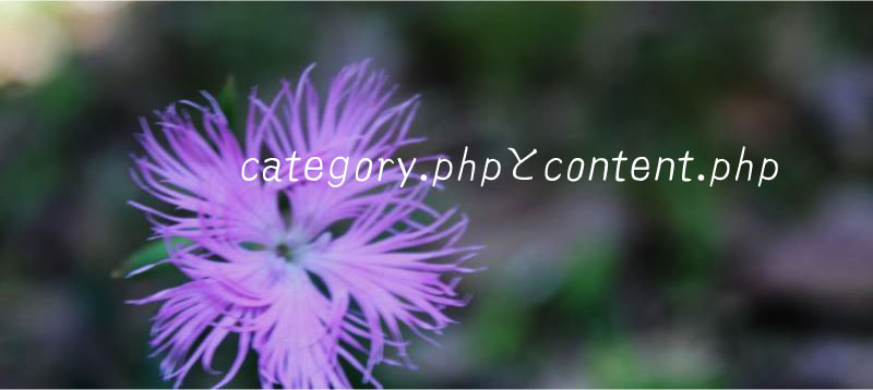 category php content php WordPress