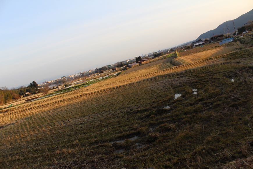 北嵯峨の風致地区 田園風景2