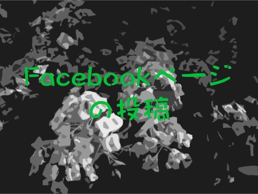 Facebookページの投稿