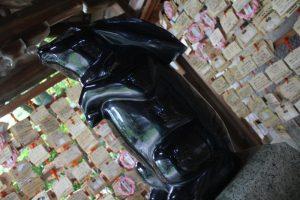 手水舎の黒ウサギ 岡崎神社 京都市左京区