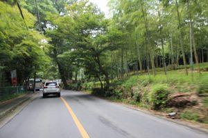 一条通福王寺から広沢池へ 京都市右京区