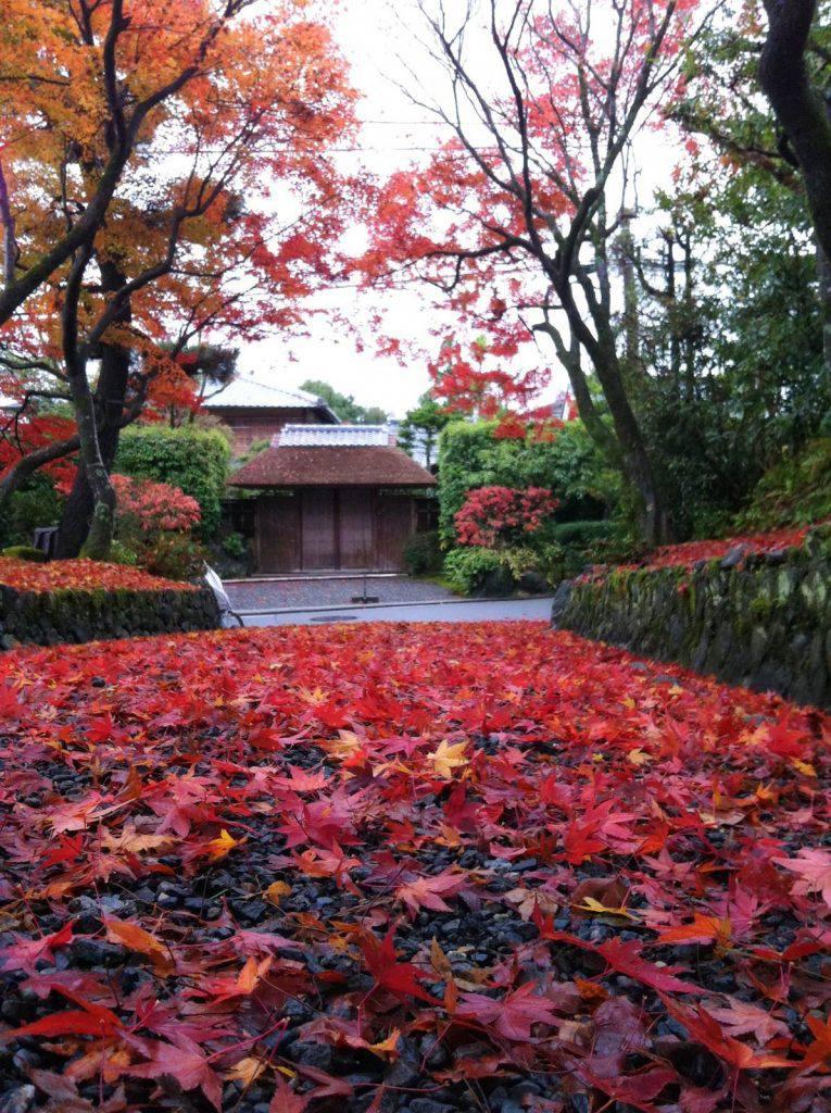 きぬかけの路を少しそれた所 京都市