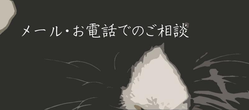 WordPressカスタマイズ・修正 メール・電話相談