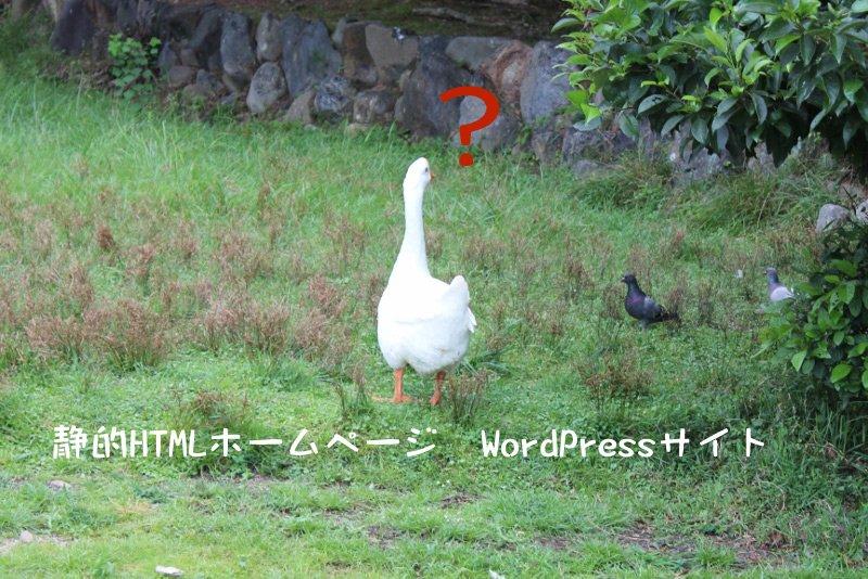 静的HTMLホームページとWordPressサイトなどで異なる「保守」の取り扱い
