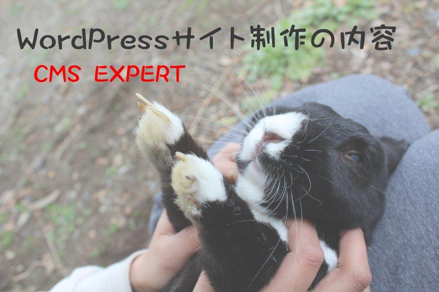 WordPress ホームページ制作の内容 CMS EXPERT